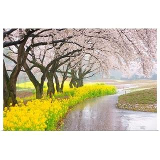 """Cherry blossom"" Poster Print"