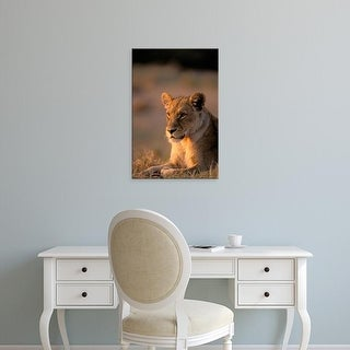 Easy Art Prints Pete Oxford's 'Okavango Delta Lioness' Premium Canvas Art