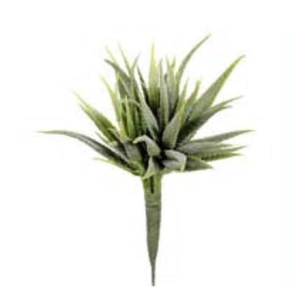 CK3020-GR 8 in. Mini Aloe Pick Green- Case of 12