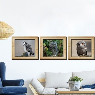 "3D Owl Vinyl Removable DIY Frame Wall Art Sticker Set of 3pcs 11.8""x35.4"""