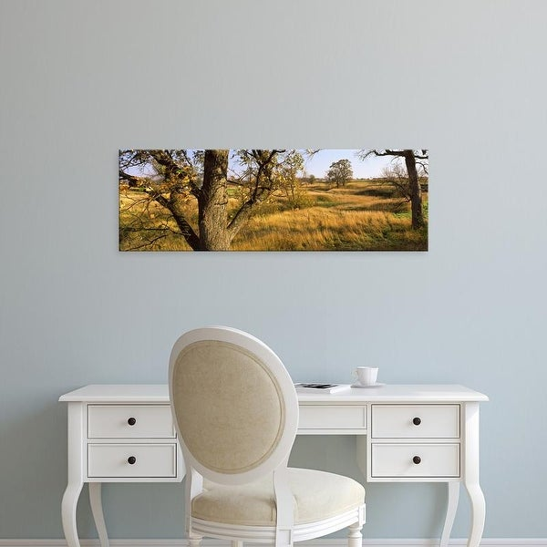 Easy Art Prints Panoramic Images's 'Trees on a landscape' Premium Canvas Art