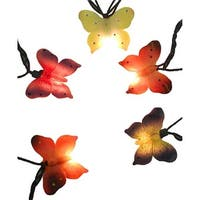 Multi-Color Butterfly Novelty Green Wire Christmas Light, Set