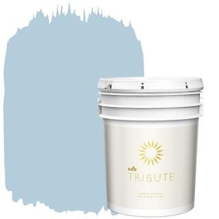 Kilz TB-44-5-GAL Mountain Stream Interior Paint - 5 Gallon