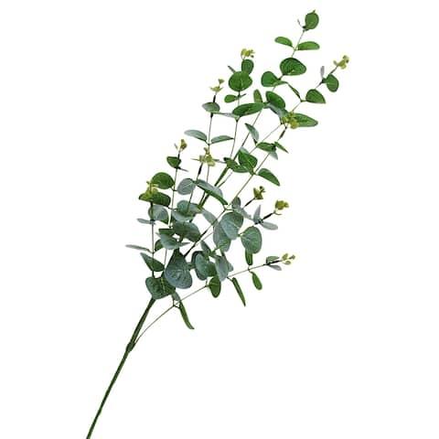 """Set of 3 Eucalyptus Leaf Stem Branch Greenery Spray 36in - 36"""" L x 13"""" W x 7.5"""" DP"""