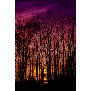 Purple Sunset With Trees Canvas Print Wall Art