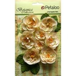 "Ivory - Botanica Ranunculus Flowers 1"" To 1.75"" 8/Pkg"