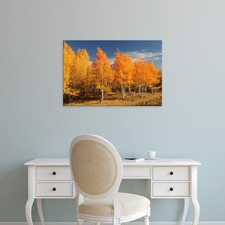 Easy Art Prints Michel Hersen's 'Autumn Aspens' Premium Canvas Art