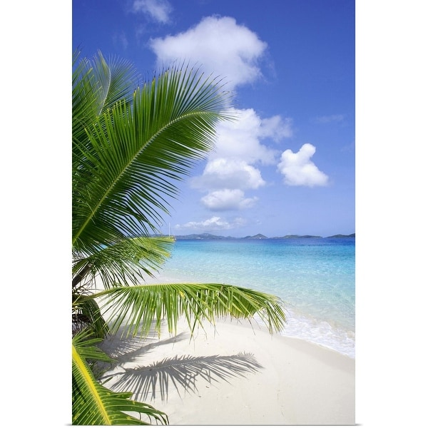 """Coconut palm tree, beach, and ocean in the Virgin Islands, Caribbean"" Poster Print"