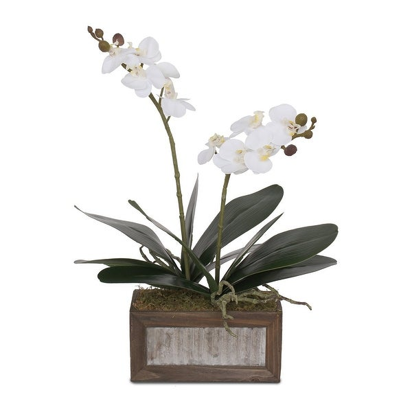 Real Touch White Phalaenopsis Orchids and Leaves in Wood Pot - 12W x 6D x 17H. Opens flyout.