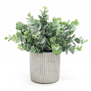 """Link to Eucalyptus Plant Arrangement in Cylinder Clay Pot 9in - 9"""" H x 10"""" W x 10"""" DP Similar Items in Decorative Accessories"""
