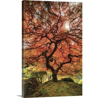 """First Colors of Fall II"" Canvas Wall Art"
