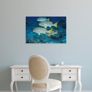 Easy Art Prints Stuart Westmorland's 'Maldives' Premium Canvas Art