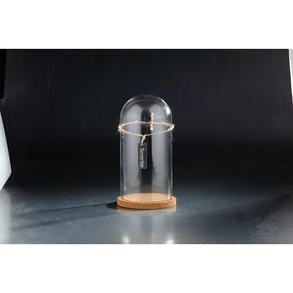 """10.5"""" Clear Cloche Terrarium Glass Vase - N/A"""