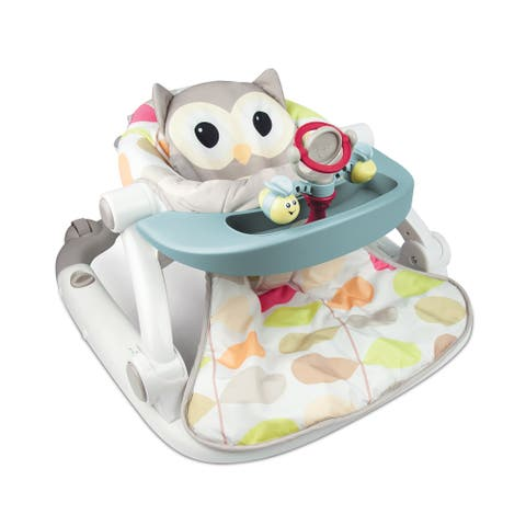Sit to Walk Activity Center - Owl