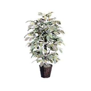 4' Apple Bush - Light Green