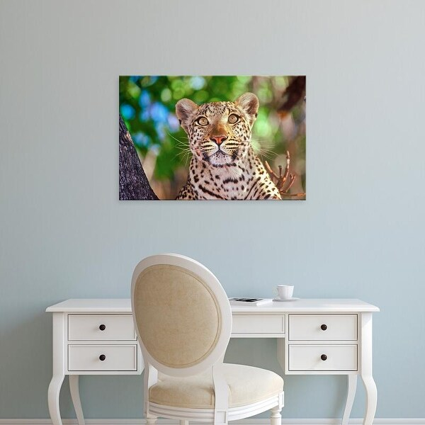 Easy Art Prints Connie Bransilver's 'Okvango Delta Wild Leopard' Premium Canvas Art