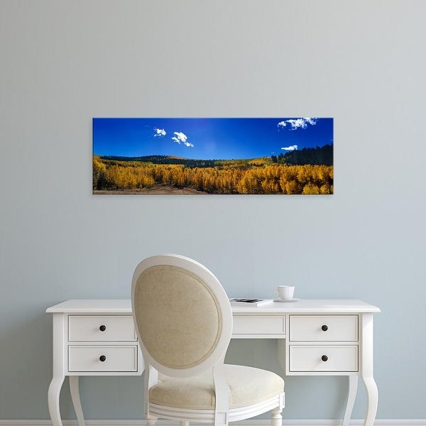 Easy Art Prints Panoramic Images's 'Aspen trees with mountain range in the background, Colorado, USA' Canvas Art