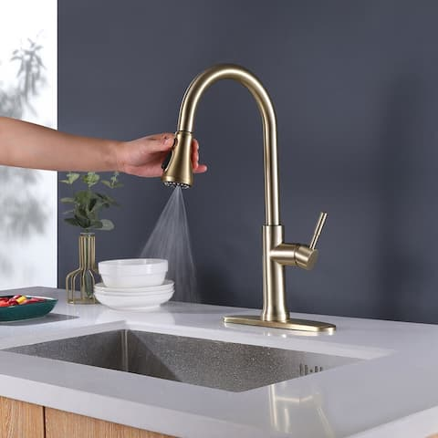 Single Handle Kitchen Sink Faucet with Pull Down Sprayer, Gold