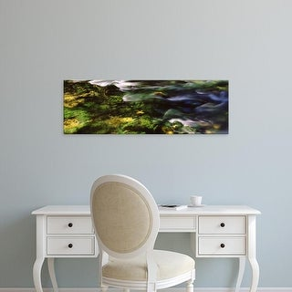 Easy Art Prints Panoramic Image 'Flowing stream, Blue Spring, Ozark National Scenic Riverways, Missouri' Canvas Art