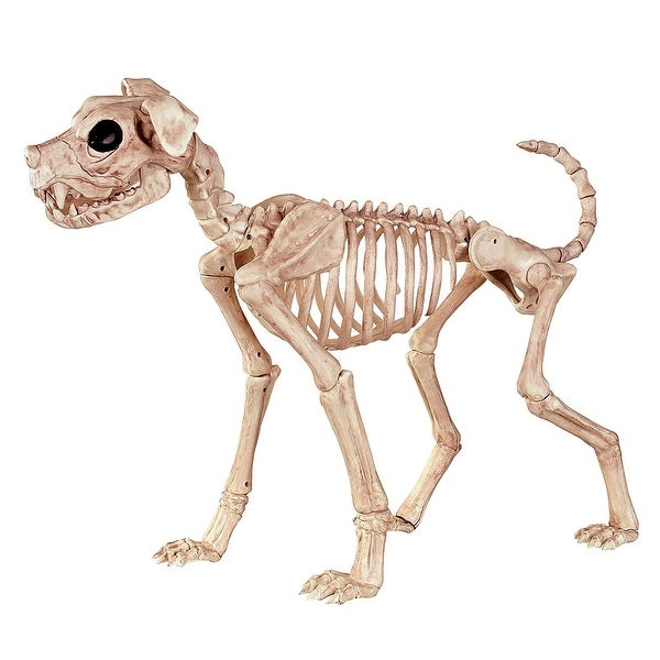 Buster Bonez Halloween Decoration