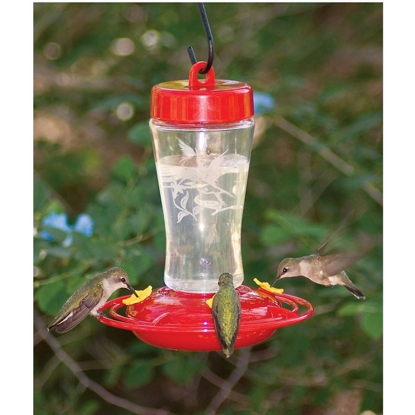 """8"""" Red and Clear Etched Glass Hummingbird Feeder 12. oz - N/A"""