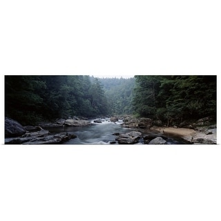 """River flowing through a forest, Chattooga River, Georgia near South Carolina"" Poster Print"