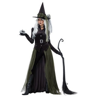 Womens Gothic Witch Halloween Costume