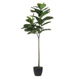 "59"" Black and Green Wide Fiddle-Leaf Fig Tree - N/A"