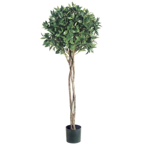 Pack of 2 Potted Artificial Bay Leaf Ball Topiaries 4' - 3-to-6-feet