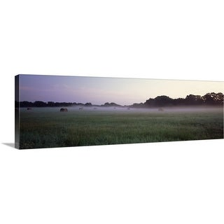 """Hay bales in a field Texas"" Canvas Wall Art"