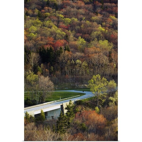 """High angle view of Blue Ridge Parkway winding through trees, spring, North Carolina"" Poster Print"
