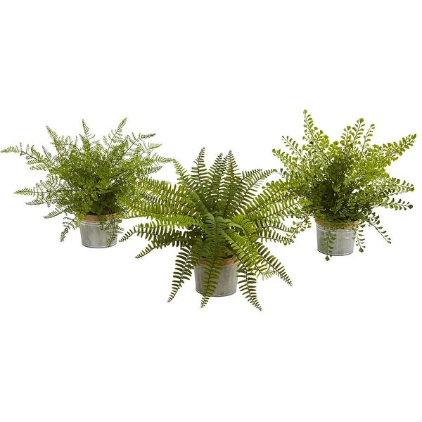 """Nearly Natural 14"""" orted Ferns with Artificial Plant - Set of 3"""