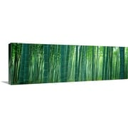 Premium Thick-Wrap Canvas entitled Bamboo Forest, Sagano, Kyoto, Japan