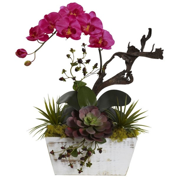 Nearly Natural Orchid & Succulent Garden with White Wash Planter
