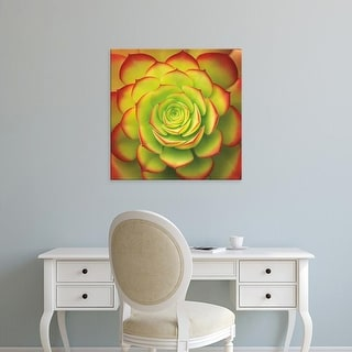 Easy Art Prints Jan Bell's 'Fiery Succulent' Premium Canvas Art
