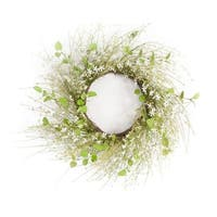 Pack of 2 Springtime Green and White Artificial Mini Flower Wreaths 24""