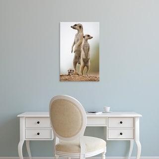 Easy Art Prints Paul Souders's 'Meerkat Pup' Premium Canvas Art
