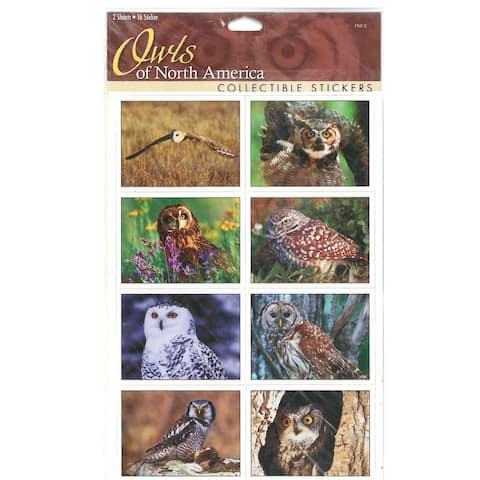 "9"" Multi-Color Sticker Sheet Owls North America"