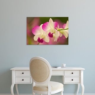 Easy Art Prints Adam Jones's 'Orchids' Premium Canvas Art