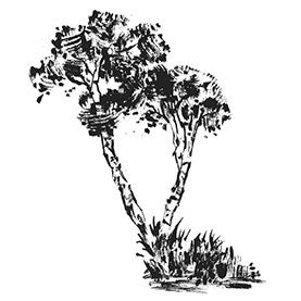 """Penny Black Mounted Rubber Stamp 3.25""""X4""""-Trees"""
