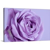 Premium Thick-Wrap Canvas entitled Purple rose