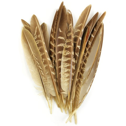 Pheasant Quill Feathers 18/Pkg-Natural