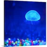 Premium Thick-Wrap Canvas entitled Jellyfish. - Multi-color
