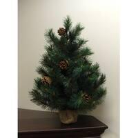 2' Royal Oregon Long Needle Pine Artificial Christmas Tree in Burlap Base - Unlit