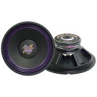 10'' 300 Watt High Power Paper Cone 8 Ohm Subwoofer