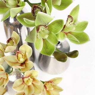 "G Home Collection Boat Cymbidium Orchid Stem in Green and Yellow 29"" Tall"