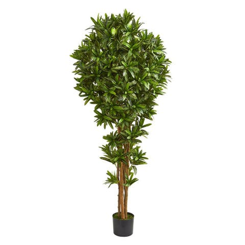 Nearly Natural Home Decorative 6' Dracaena Artificial Faux Tree - Not Available