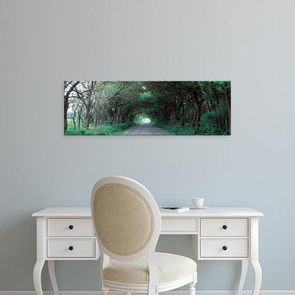 Easy Art Prints Panoramic Images's 'Road Through Trees Marion County, Illinois, USA' Premium Canvas Art