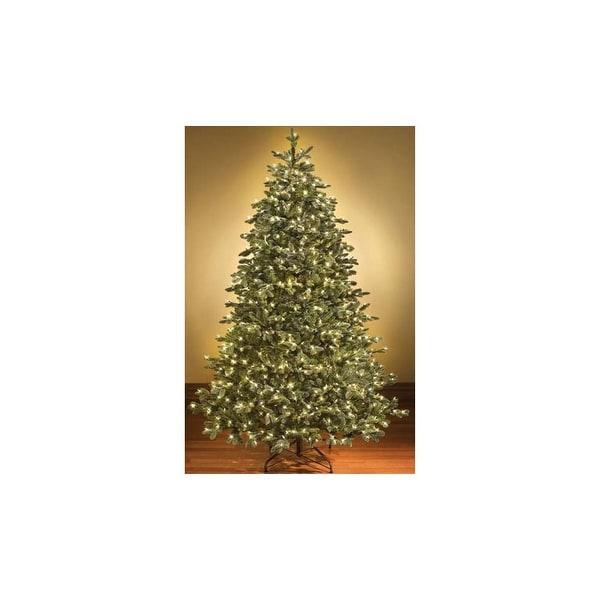 Lead Free Christmas Trees: Shop Christmas At Winterland WL-TRSQ-14-LWW 14 Foot Pre