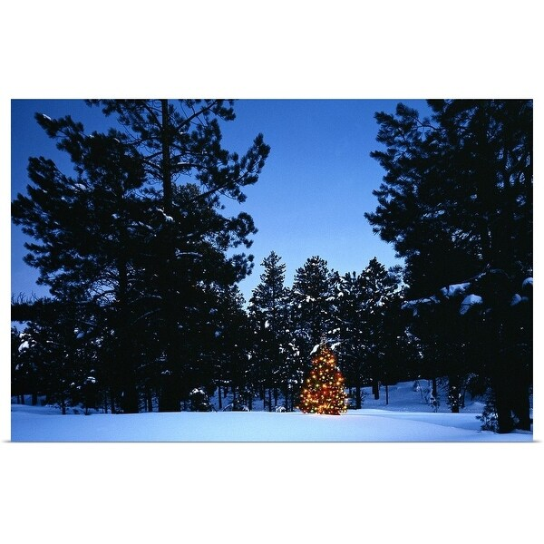 """Christmas tree in pine forest"" Poster Print"